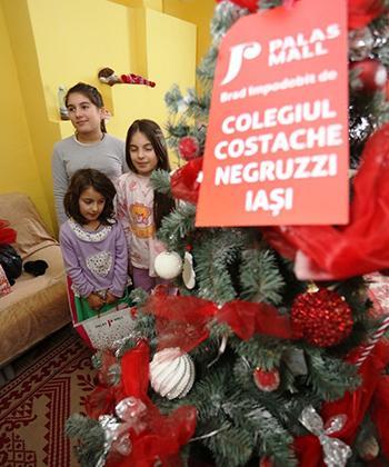 Nouă familii ieșene au primit în dar de la Palas Mall câte un brad de Crăciun